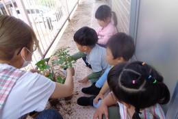 なかじま保育園ギャラリー01